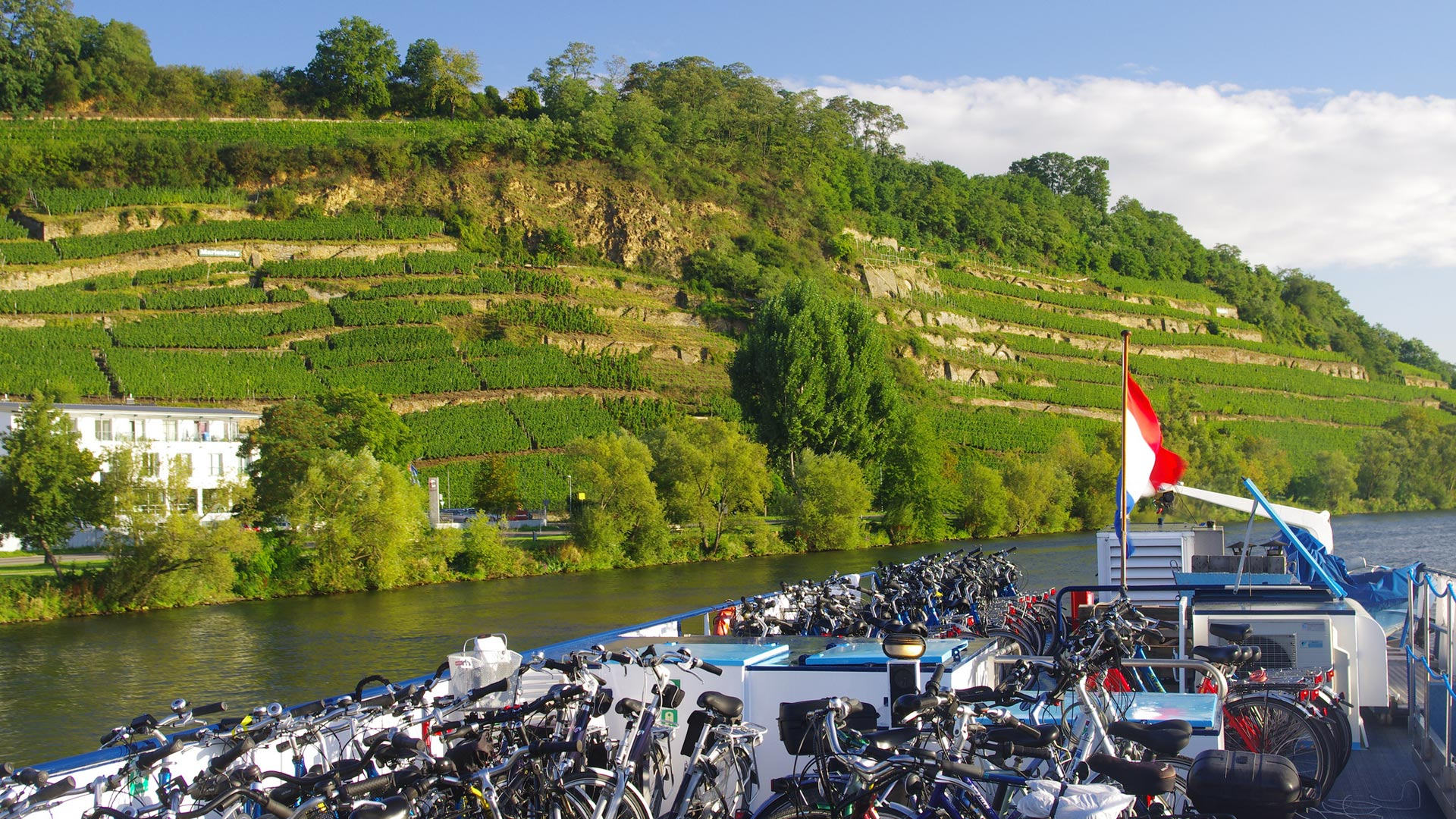 Fietsen op het dek van hotelschip MS Patria met wijnbergen op de achtergrond. © SE-Tours