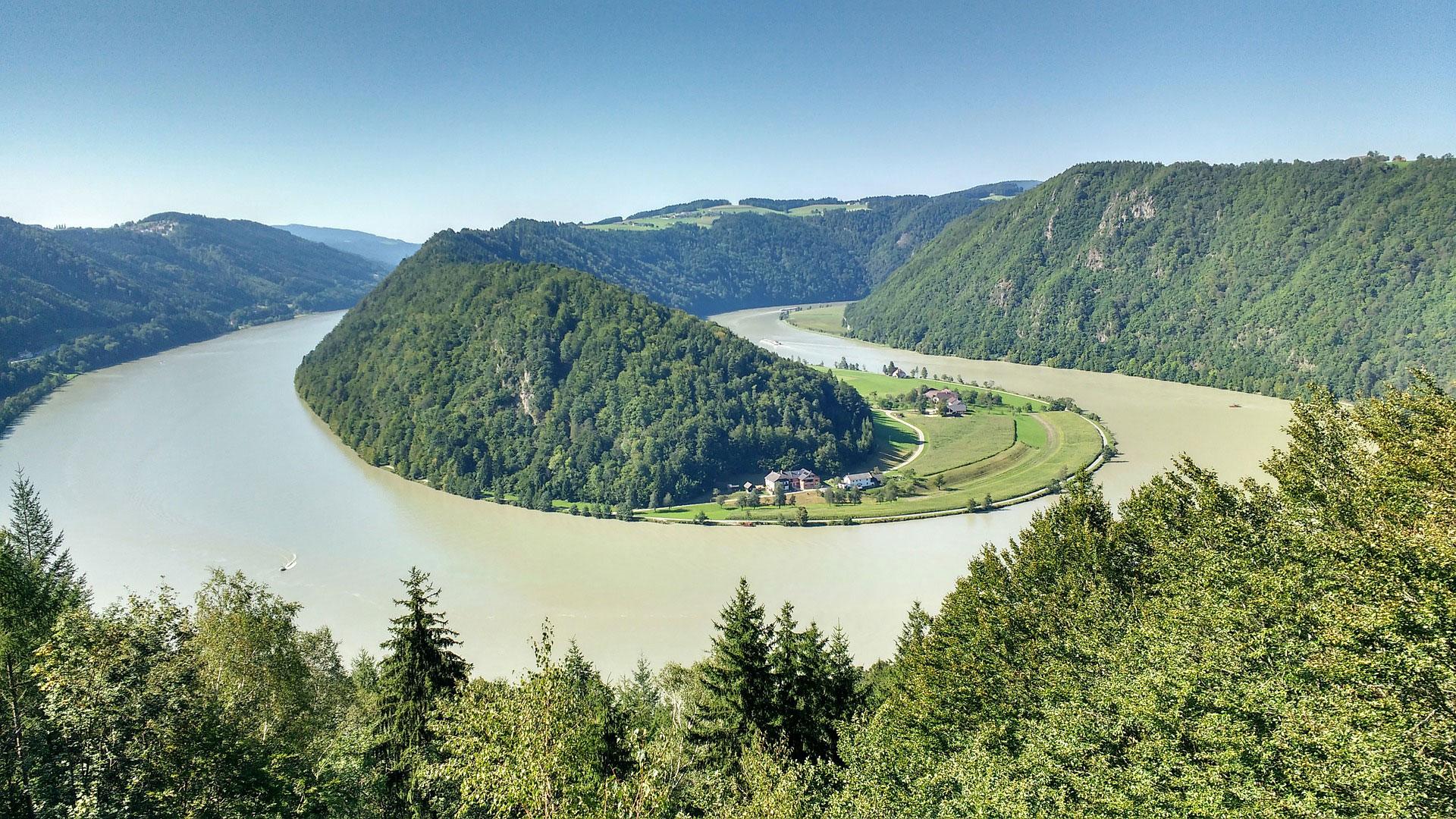 De Donau-lus Schlögen