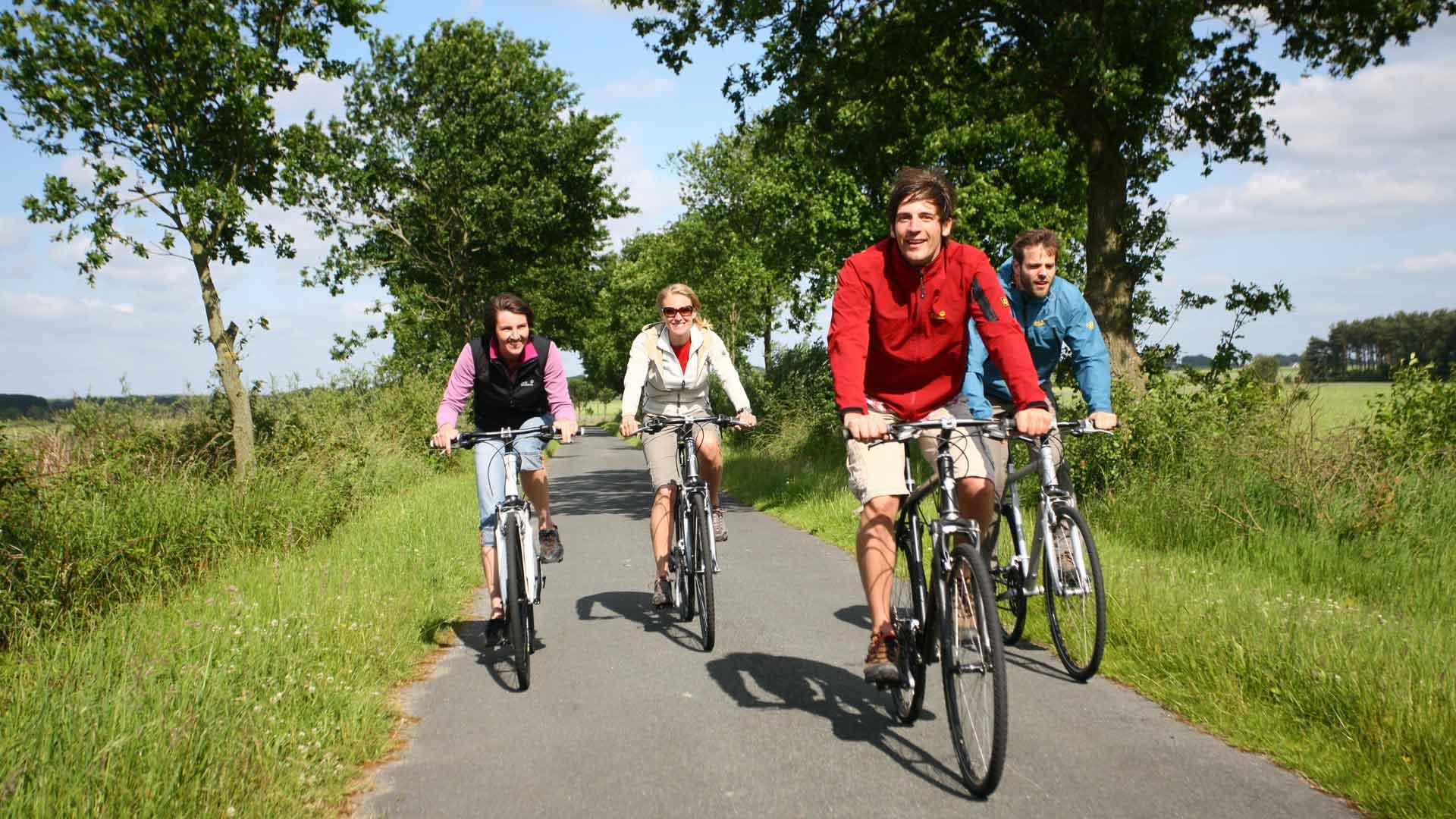 Ontspannen fietsen op rustige wegen op de EmsRadweg