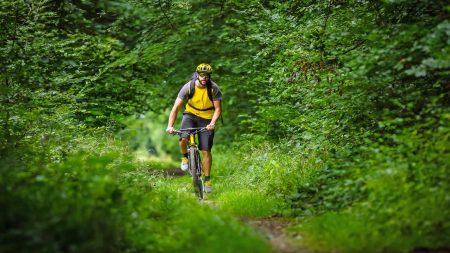 Mountainbiken op een singletrail door de bossen.