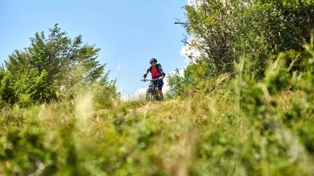 Lekker downhill op je mountainbike in de Harz op natuurlijke routes.