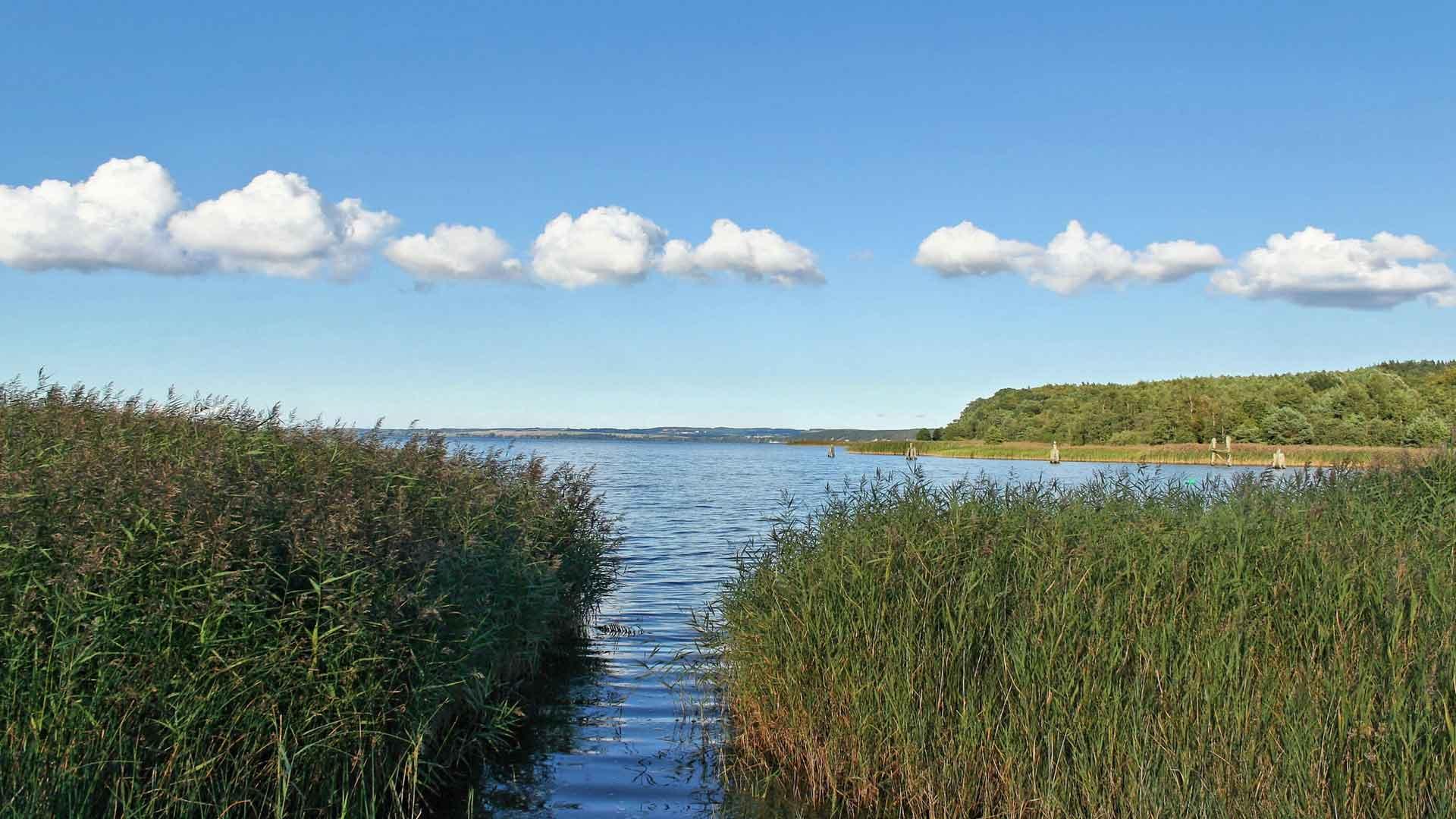 Het unieke Boddenlandschap van Mecklenburg-Vorpommern