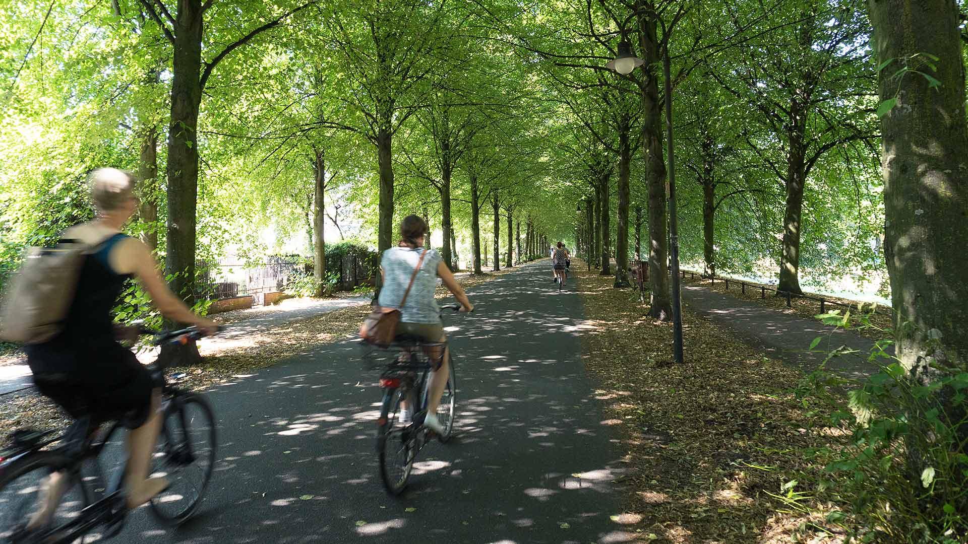 De Promenade is een rondweg voor fietsers om het oude centrum van Münster. © Kootstra