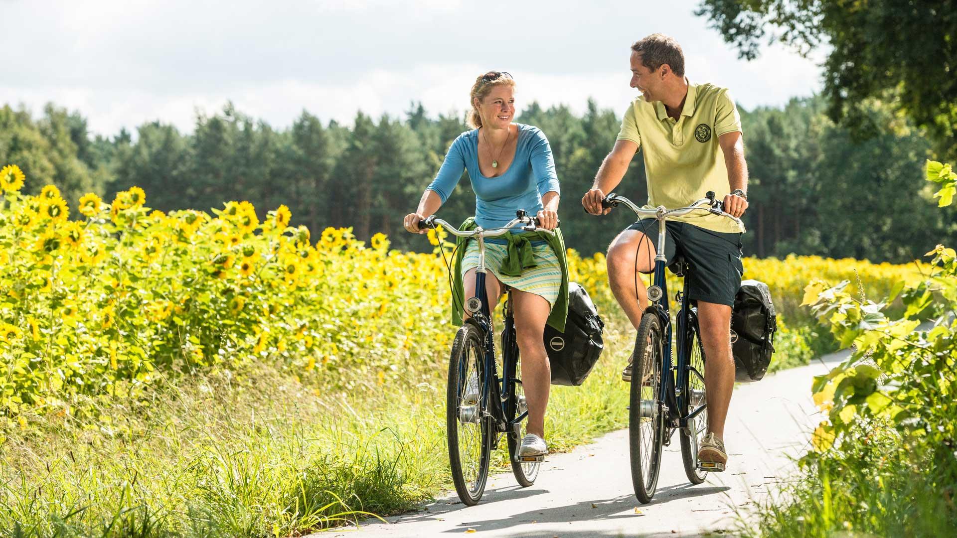 Tijdens een fietsvakantie op de Lüneburger Heide zie je meer dan hei.