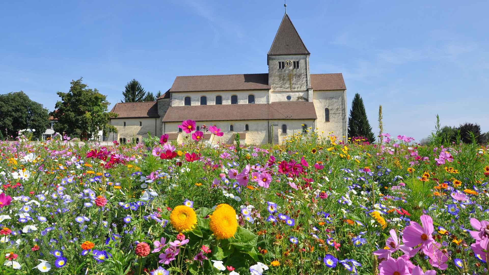 Het eiland Reichenau in de Bodensee is UNESCO werelderfgoed.