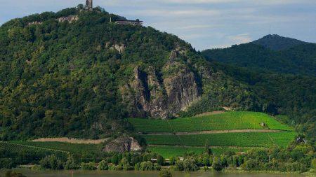 De Drachenfels in het Siebengebirge, een van de must-sees tijdens een fietsreis langs de Rijn.