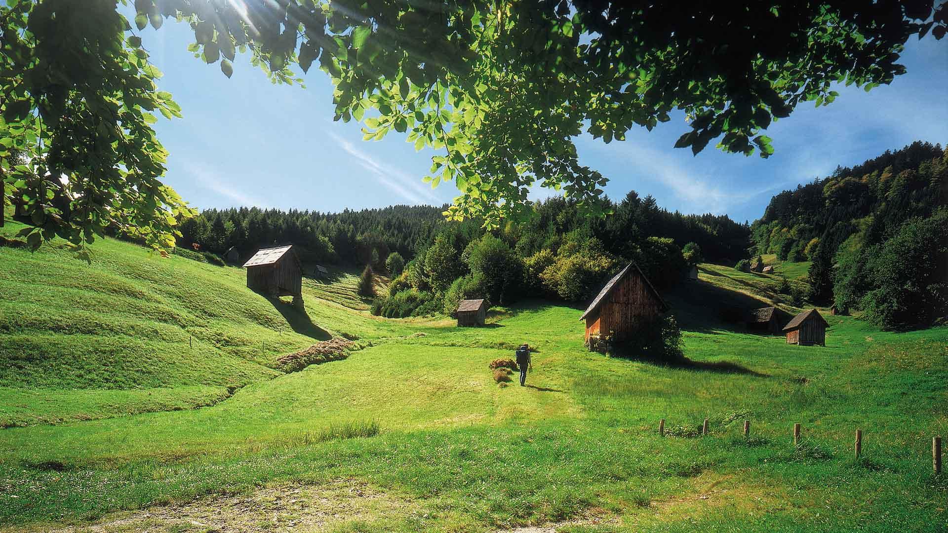 De Murg vallei in het Zwarte Woud
