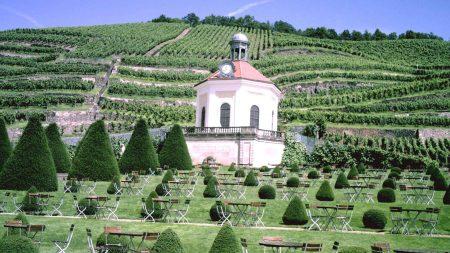 Tijdens deze wijnreis langs de Elbe vanuit Dresden bezoek je ook Schloss Wackerbarth