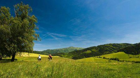 In het Zwarte Woud kun je uitstekend fietsen langs de rivieren.