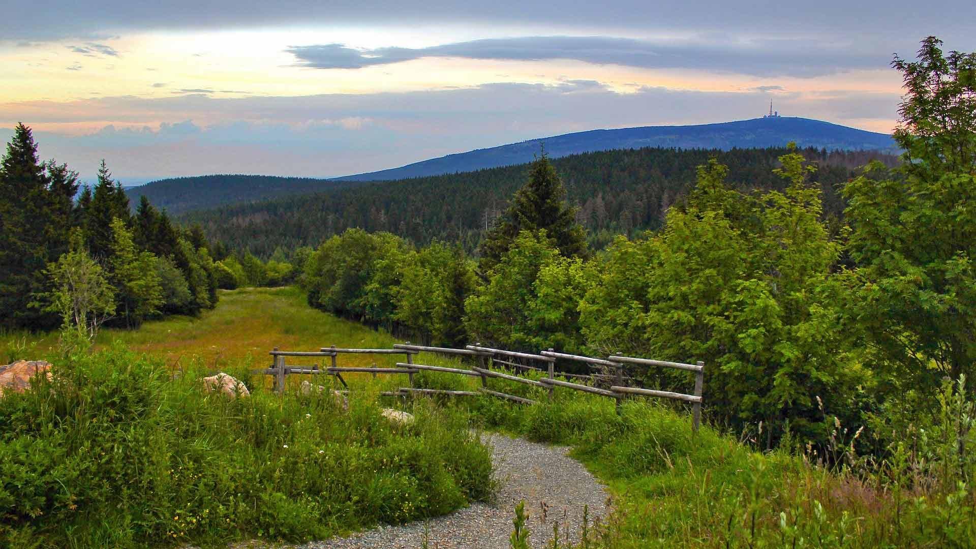 De ongerepte natuur van de Harz met uitzicht op de Brocken.