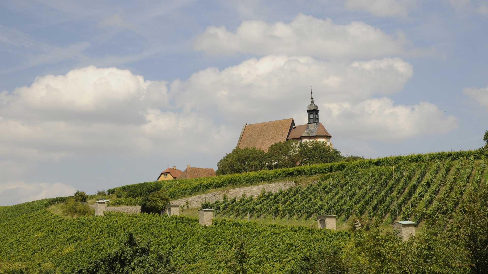 De pelgrimskerk St. Maria im Weingarten ligt tussen de wijnbergern bij Volkach.
