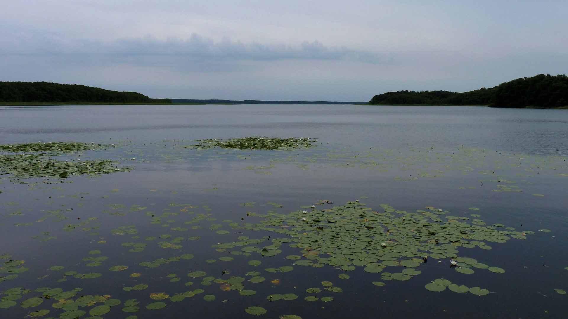 De weidsheid van het Merengebied van Mecklenburg-Vorpommern.