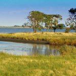 Het boddenlandschap in Mecklenburg-Vorpommern: prachtige natuur tijdens je fietsvakantie langs de Ostsee.