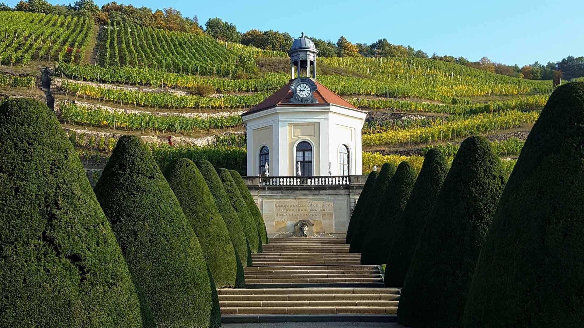 Schloss Wackerbart in Radebeul ligt midden tussen de wijnbergen.