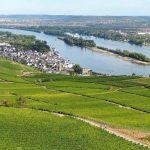 Bij Rüdesheim aan de Rijn begint de wijnreis met de fiets door Rheinhessen, Rheingau en langs Rijn en Nahe.