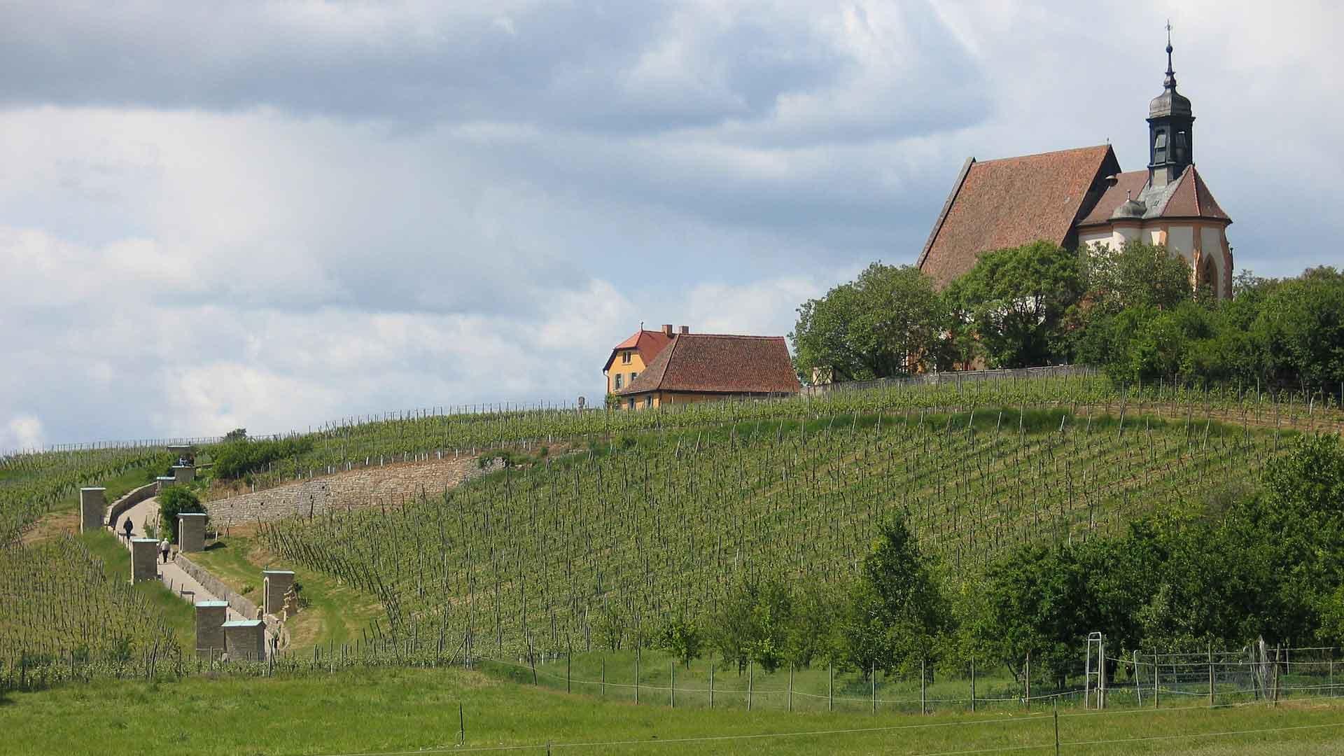De pelgrimskerk St. Maria in Volkach ligt prachtig in de wijngaard.